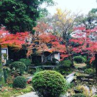 季節の庭 宮の内茶寮の画像1
