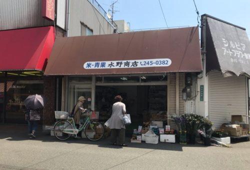 野菜・くだもの 水野商店