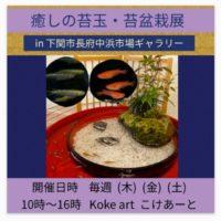 Koke artの画像1